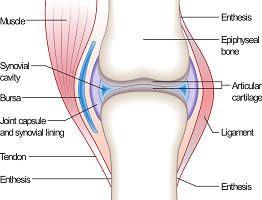 Методы лечения суставов