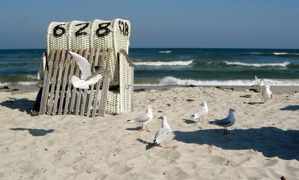 Пляжный отдых на Балтийском море