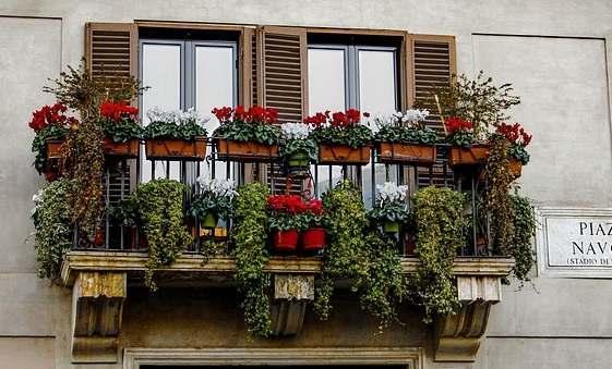 Подвесные кашпо для цветов