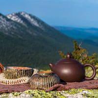 Иван чай полезные свойства