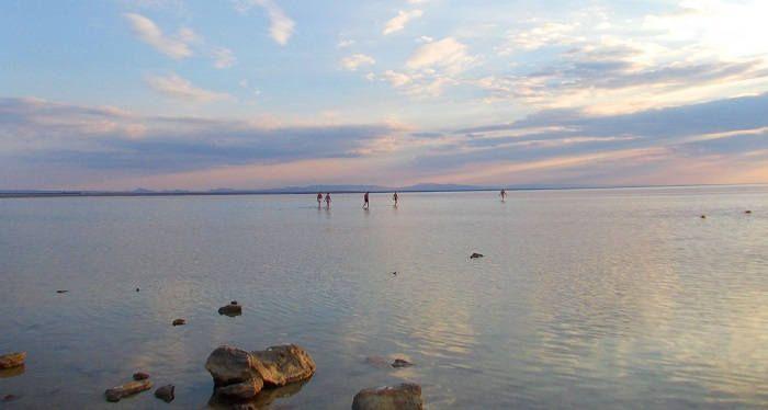 Нижнегорский район озеро Сиваш