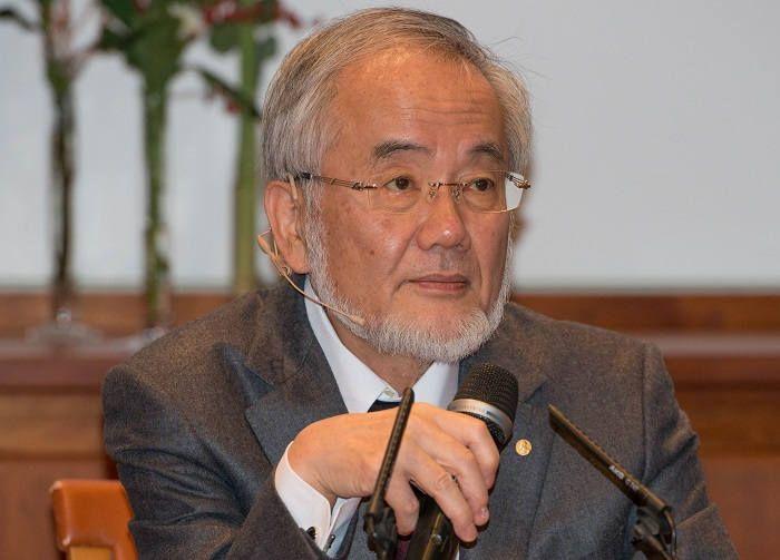 Японский исследователь Ёсинори Осуми