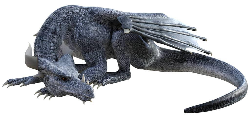 Умный китайский дракон