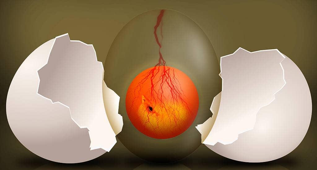 Гомункул из яйца
