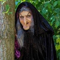 Ведьма это